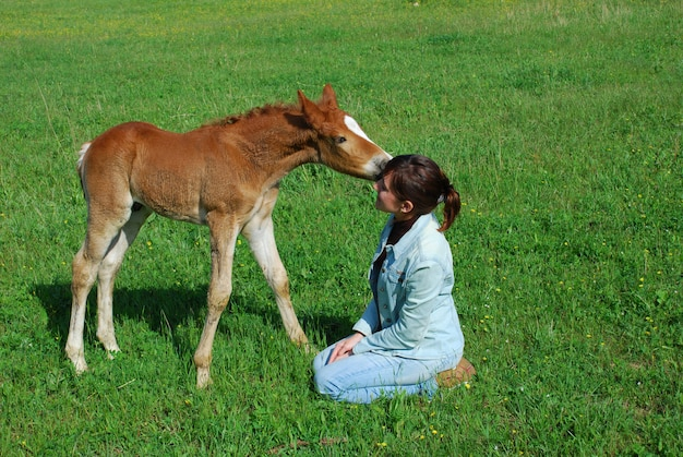Baby horse with young woman on grass
