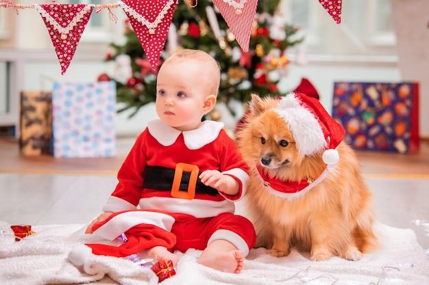 산타클로스 의상을 입은 아기와 푹신한 포메라니안 스피츠가 집에서 장식된 크리스마스 트리를 배경으로 함께 놀고 있습니다.