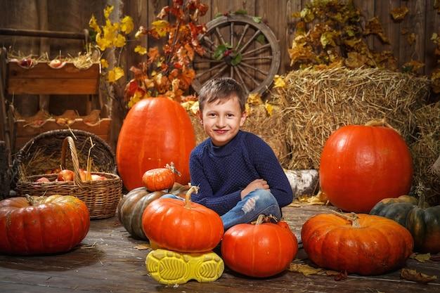 Малышка в сене с тыквами. счастливый мальчик сидит на полу с разными тыквами.
