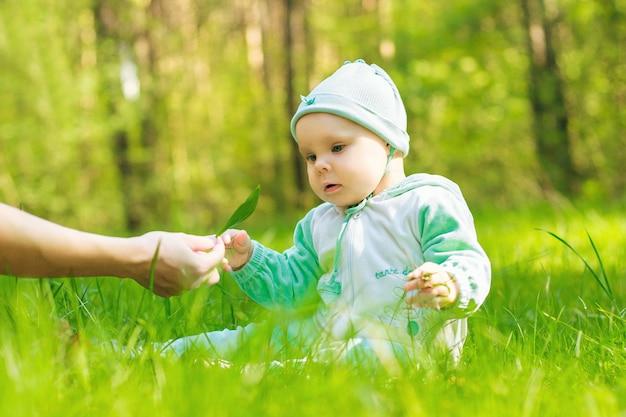 Ребенок в парке берет в руки зеленую листовую весну