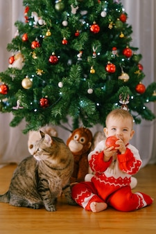 Baby is eating an apple while sitting next to a cat in front of a christmas tree. high quality photo