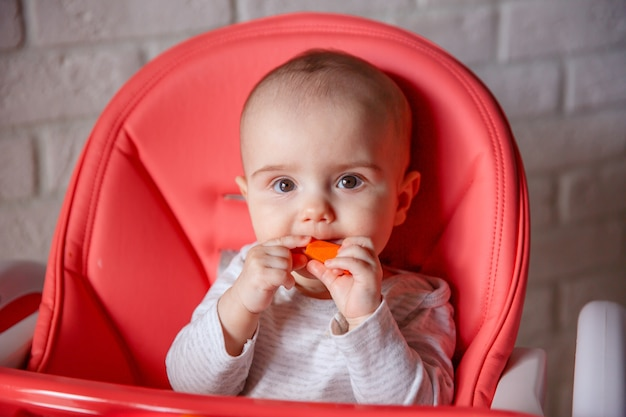 The baby is sitting in a high chair eating a piece of carrot
