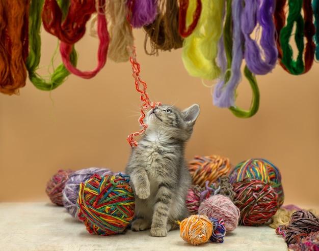 羊毛糸の多くのボールで遊ぶ子猫の赤ちゃん