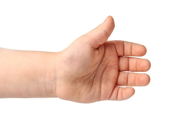 흰색 절연 아기 손바닥