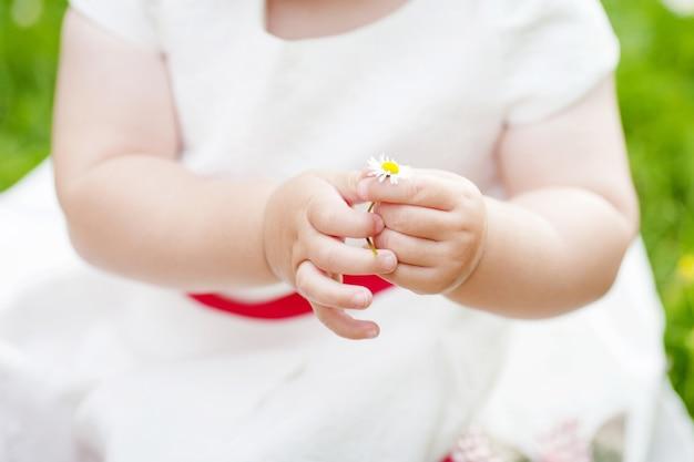 デイジーを持っている赤ちゃんの手。手に白い花を保持している白いドレスでかわいい女の子