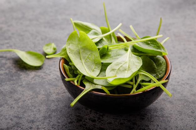 Baby spinach leaves in bowl  on grey concrete , top view, copyspace. clean eating, detox, diet food ingredient