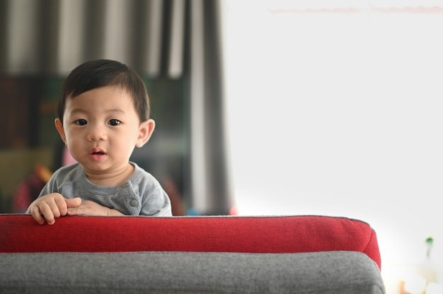 Baby standing on a sofa in the living room.