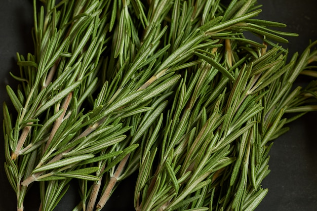 Bach of fresh rosemary branches.