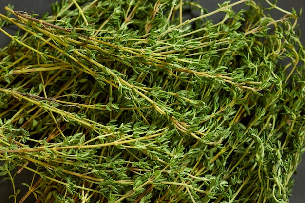 Bach of fresh thyme branches