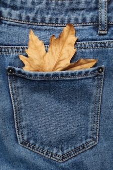 Back of jeans with leaf in pocket, space for text