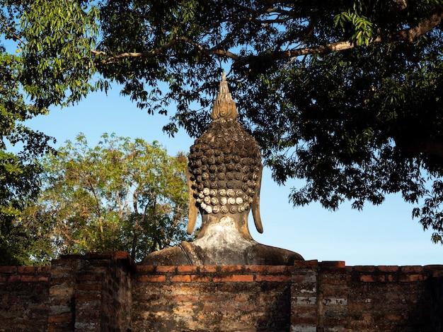 タイのユネスコ世界遺産であるスコータイ歴史公園の古代の仏像の頭、木の上の屋外スタッコ、青空の背景の裏側。