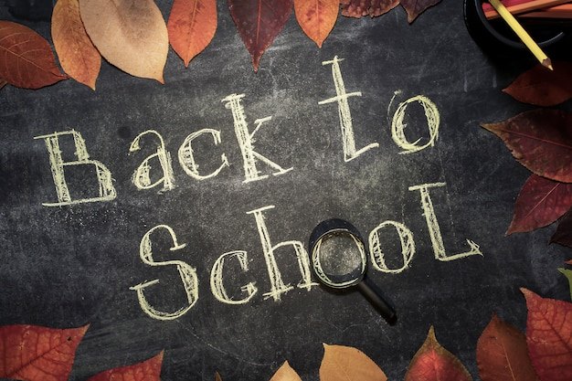 Back to school concept. frame of autumn leaves. hand-written chalk on the blackboard