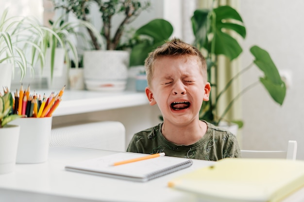 Back to school distance learning online education caucasian crying kid boy studying at home and