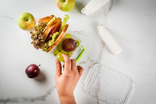 Back to school. person making healthy lunch box with fresh fruit apples, plums, grapes, yogurt, sandwich  lettuce, tomatoes, cheese, meat. white marble table.  top view female hands