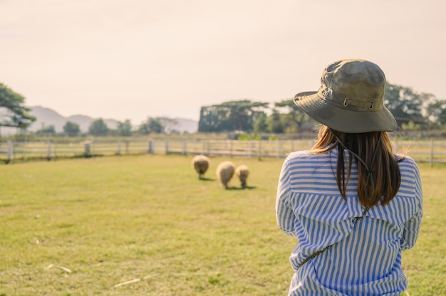 Back side of female farmer working and looking on sheep farm