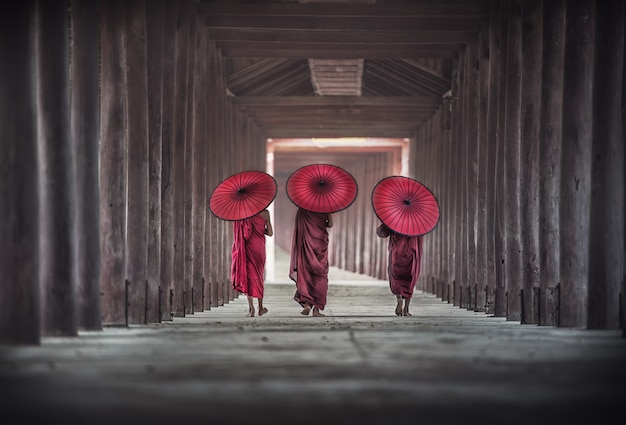 Back side of three buddhist novice are walking in pagoda