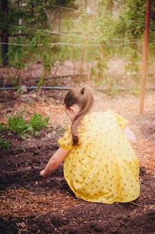 노란 드레스를 입은 한 소녀가 쪼그리고 앉아 검은 습기가 많은 건강한 채소의 씨앗을 심는 뒷모습...