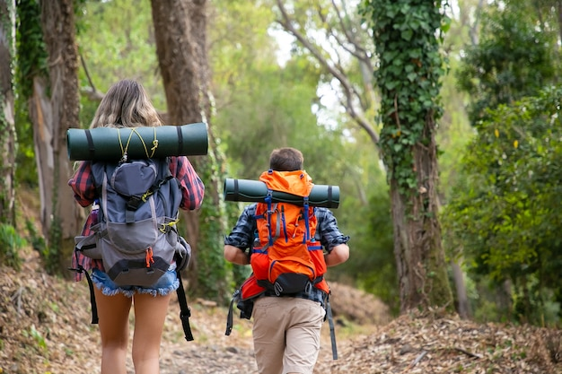Back view of backpackers walking on mountainous trail. caucasian hikers or traveler carrying backpacks and hiking in forest together. backpacking tourism, adventure and summer vacation concept