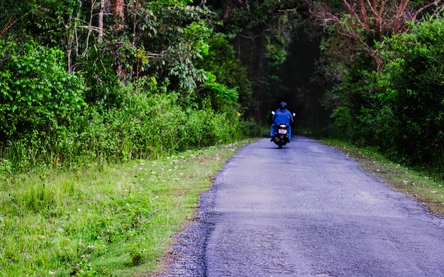 The back view of biker riding motorcycle in the forest Premium Photo