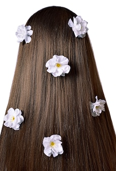 Back view of brown hair with white flowers isolated on white  background