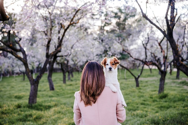 Back view of caucasian woman and dog in park in springtime at sunset. love and friendship concept. pets outdoors