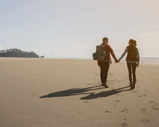 Back view of couple holding hands on beach