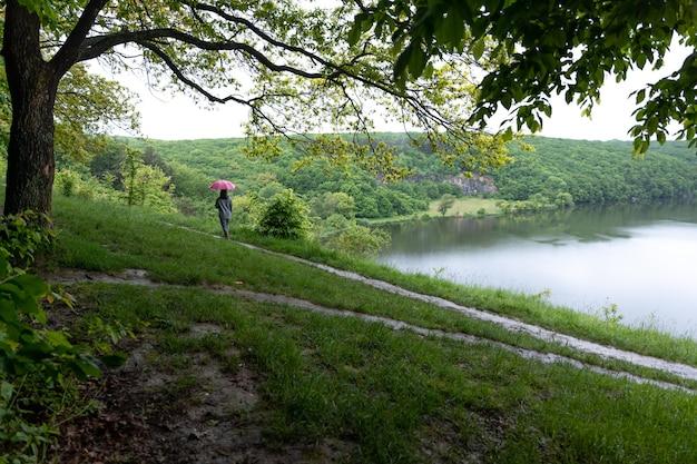 雨の日に湖の近くの森を散歩する傘の下の女の子の後ろ姿。