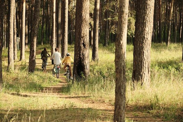 松の木と草の間の森の小道を移動しながら自転車に座っている3人の現代のアクティブな家族の背面図