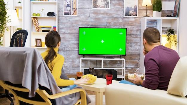 テレビを見ながらジャンクフードを食べる椅子に座っているカップルの背面図。テレビの前の猫。