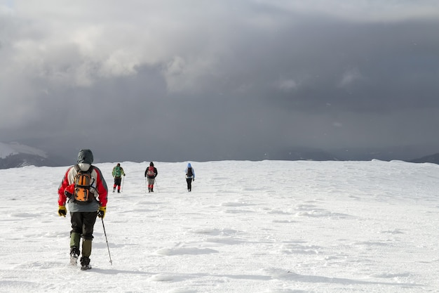 Вид сзади туристов, идущих на заснеженном холме в зимних горах.