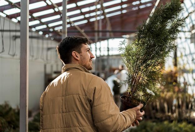 保育園で鍋に小さな木を保持している男の背面図