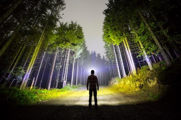 Вид сзади человека с головным фонарем на лесной дороге