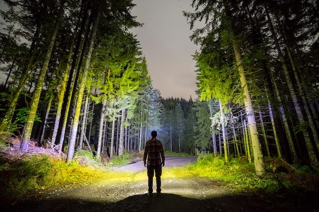 Задний взгляд человека при головной электрофонарь стоя на дороге леса земной среди высокорослых ярко освещенных елевых деревьев под красивым синим небом. ночной лесной пейзаж и приключения.