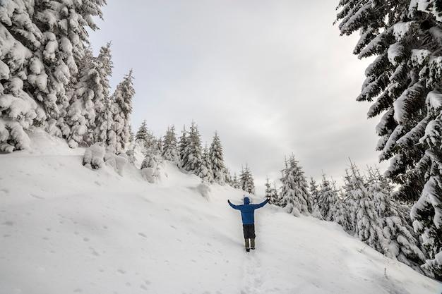 Задний взгляд туристического hiker стоя с поднятыми оружиями на крутом склоне горы на предпосылке космоса экземпляра елевых деревьев и ясного неба. туризм и зимние горные виды спорта концепции.