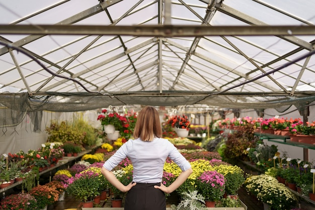 彼女の仕事の結果を見ている女性起業家の背面図。さまざまな種類の花を見ている温室の所有者