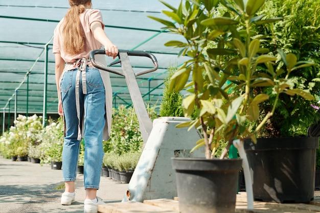 넓은 통로를 따라 이동하는 동안 큰 화분에서 자라는 녹색 식물과 함께 카트를 당기는 작업복을 입은 온실의 젊은 여성 노동자의 뒷모습