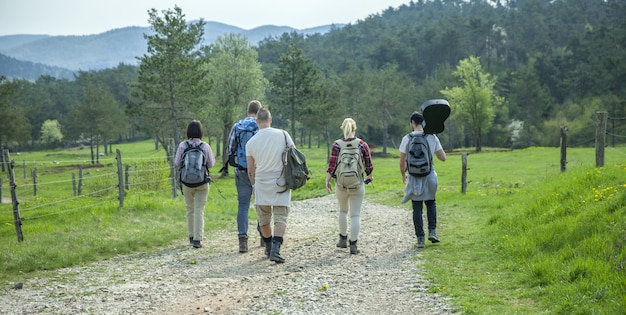森の中を歩き、良い夏の日を楽しんでいるバックパックを持つ若い友人の背面図