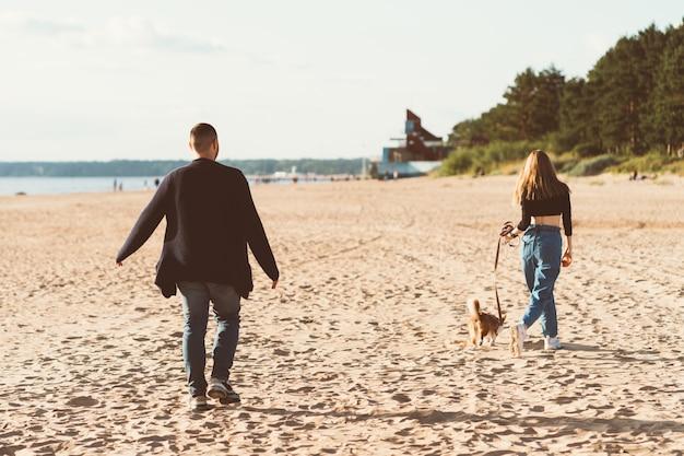若い幸せなカップルとビーチの上を歩く犬の背面図