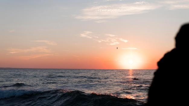 Вид сзади человека, смотрящего на закат с копией пространства