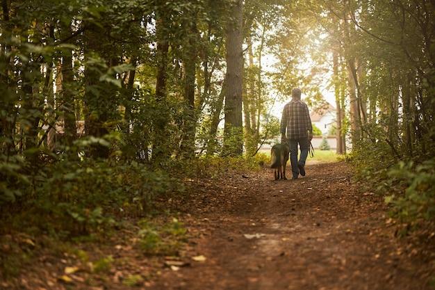 햇볕이 잘 드는 아름다운 숲을 걷고 있는 남자와 그의 강아지의 뒷모습 사진