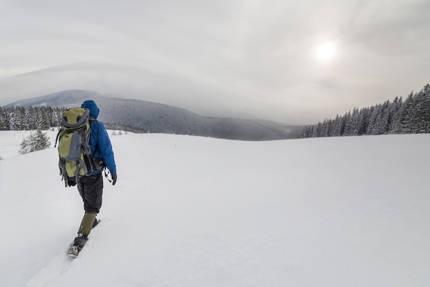 Back view of tourist hiker in warm clothing with backpack walking upward mountains covered with snow on spruce forest and cloudy sky copy space background.