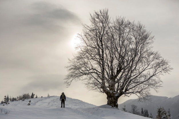 Back view of tourist hiker with backpack standing in white clean deep snow