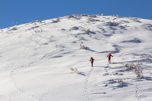 Back view of two tourist hikers with backpacks and hiking poles ascending snowy mountain slope on sunny winter day on white snow  extreme sport, recreation, winter holidays.