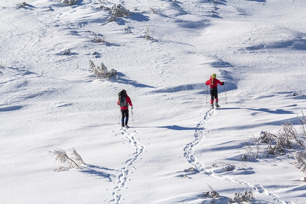 Back view of two tourist hikers with backpacks and hiking poles ascending snowy mountain slope on sunny winter day.