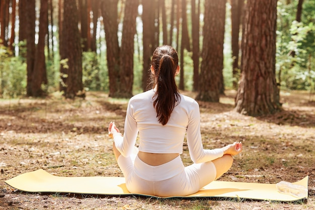 Back view of woman with ponytail in tight sportswear sitting in lotus position on gym mat practicing yoga, meditating in forest, doing sports