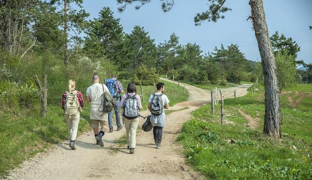 Vista posteriore di giovani amici con zaini che camminano nella foresta e si godono una buona giornata estiva