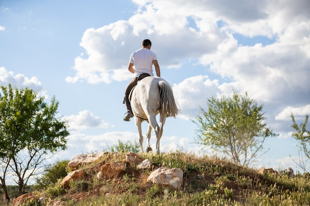 Back view of young male in casual outfit riding white horse on grassy meadow a sunny day