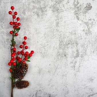질감이 있는 회 반죽 벽에 열매와 원뿔이 있는 가지를 배경으로 합니다. 제품 시연용, 여유 공간, 레이아웃, 모형, 원근감 보드, 배경 보드.