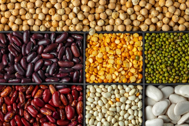 Background of assorted grains and beans in sections