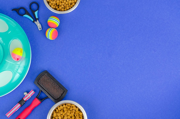 Background of bowls with food, toys and pet care items, top view. studio photo